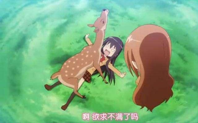 二次元的日本里有很多可爱的动物,三次元的日本里也存在着不少萌物!
